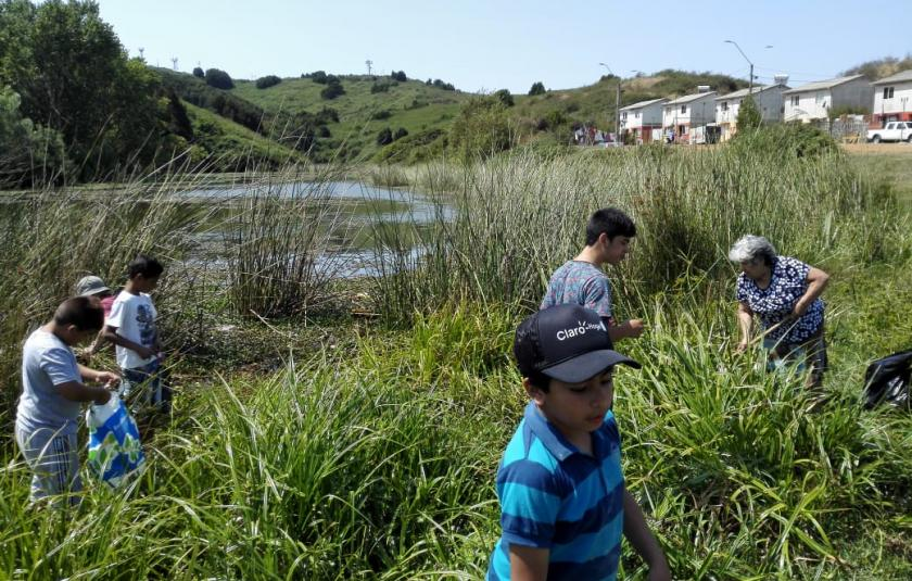 Ecological Cleanup Day in Chile