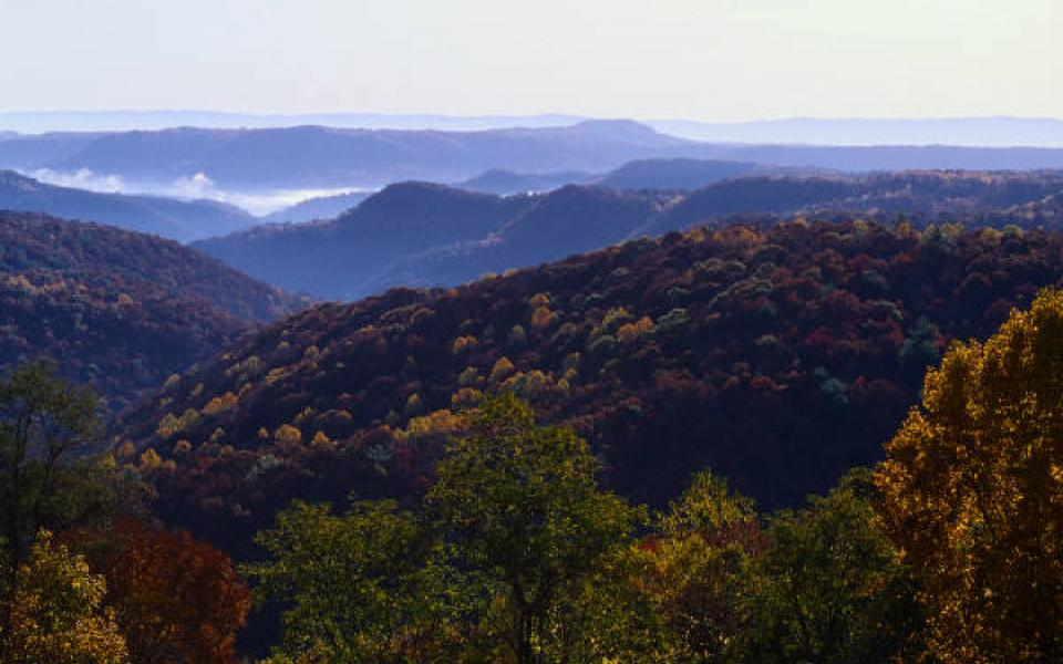 Blue Ridge Mountains of the Cohutta Wilderness