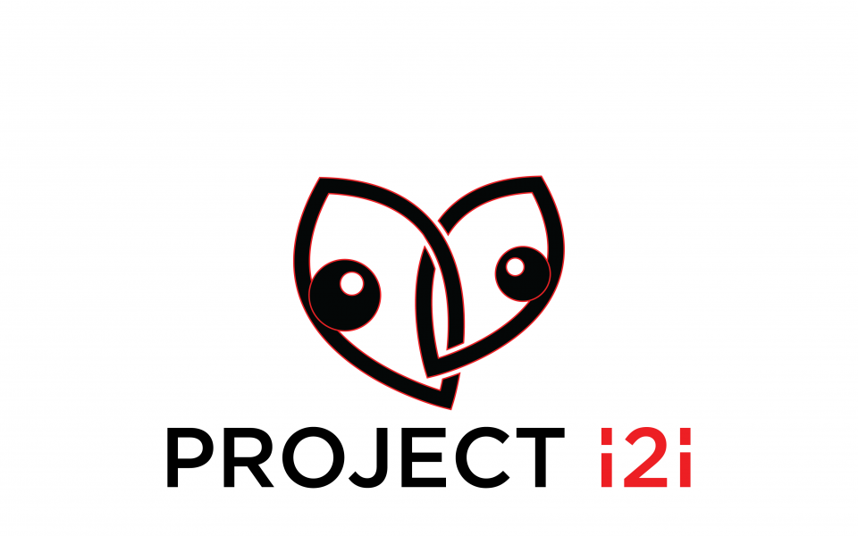 A graphic of two eyes with the words Project i2i below it.